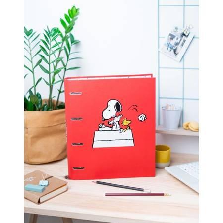 Snoopy - Segregator
